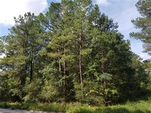 Photo of 621 Walnut Drive, Jacksonville, NC 28540 (MLS # 100181957)