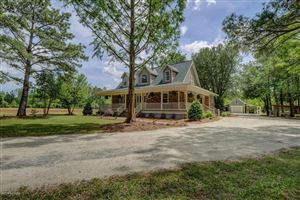 Photo of 543 Andalusian Trail, Burgaw, NC 28425 (MLS # 100171960)