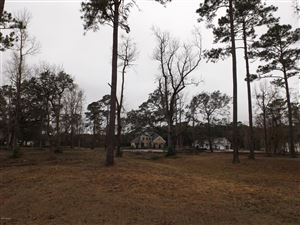 Photo of 8385 Quinn Place SE, Southport, NC 28461 (MLS # 100137966)