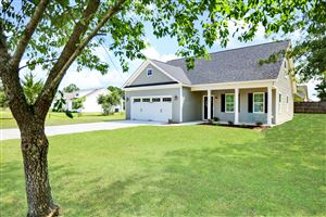Photo of 356 Zonnie Lane, Hampstead, NC 28443 (MLS # 100173974)