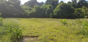 Tiny photo for 713 N 8th Street, Wilmington, NC 28401 (MLS # 100133979)