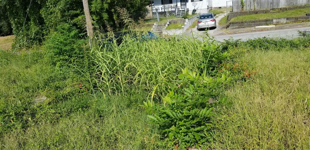 Photo of 715 N 8th Street, Wilmington, NC 28401 (MLS # 100133982)