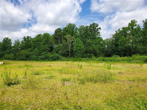 Photo of 000 Haw Branch Road, Beulaville, NC 28518 (MLS # 100229985)