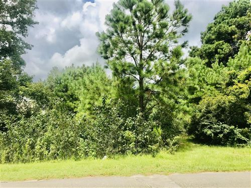 Photo of 1423 Chadwick Shores Drive, Sneads Ferry, NC 28460 (MLS # 100237992)