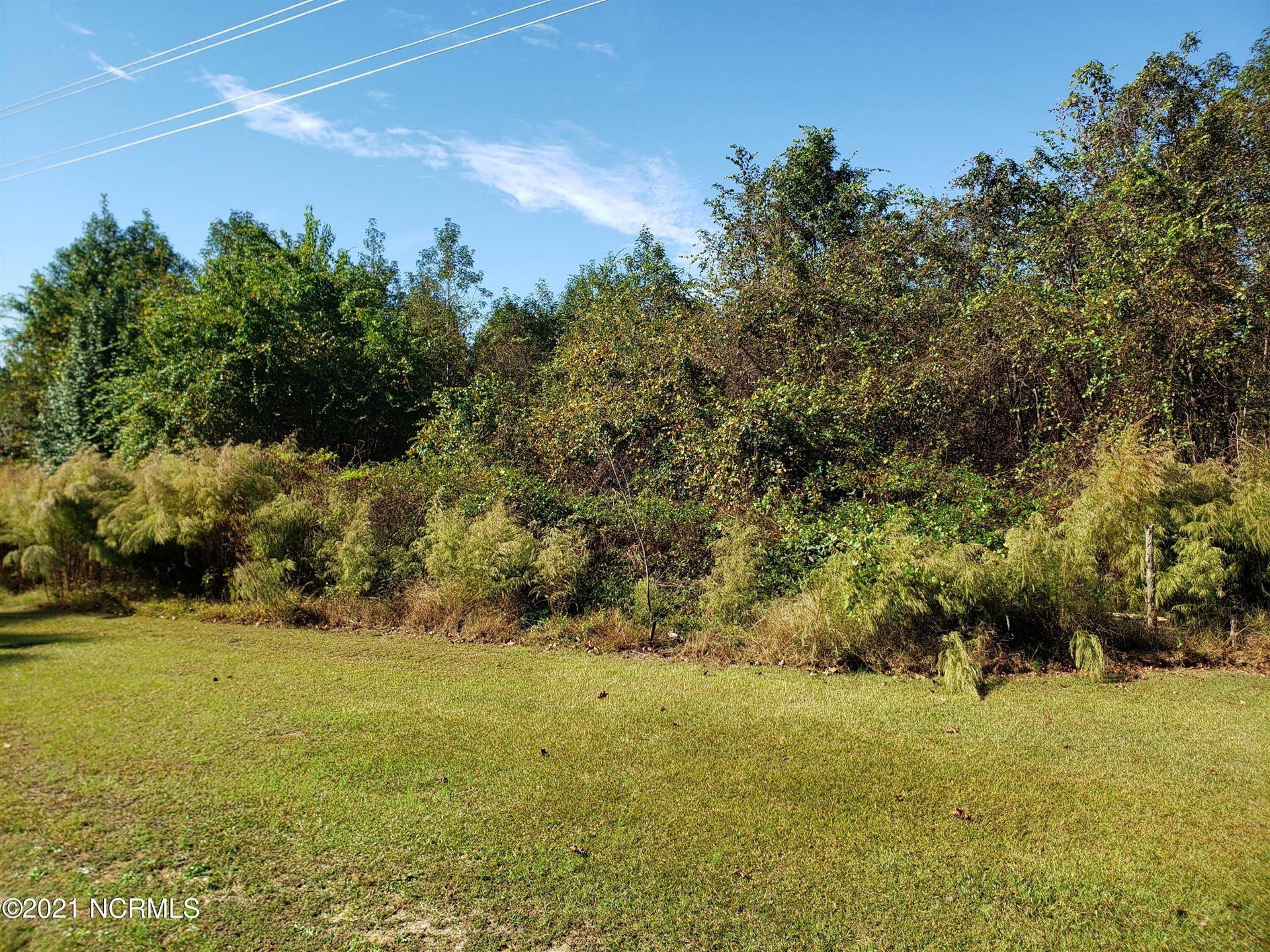 Photo of 5 Basstown Road, Clinton, NC 28328 (MLS # 100295992)