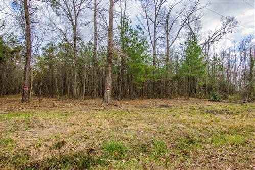 Photo of 0 Ashton Lake Road, Burgaw, NC 28425 (MLS # 100203998)