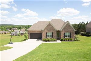 Photo of 523 Rock Springs Drive, OXFORD, MS 38655 (MLS # 143072)