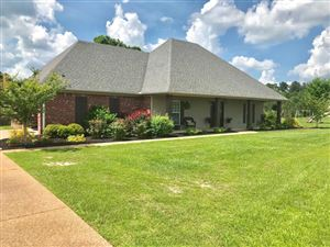 Photo of 806 Twin Lakes Cove, OXFORD, MS 38655 (MLS # 141229)