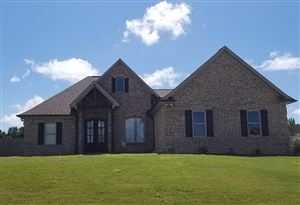 Photo of 625 Taylor Overlook Dr., OXFORD, MS 38670 (MLS # 141365)