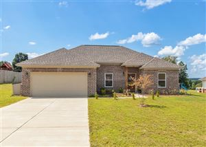 Photo of 148 Shelbi Dr, OXFORD, MS 38655 (MLS # 141378)