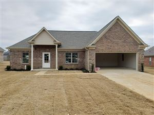 Photo of 133 Oakleigh Dr, BATESVILLE, MS 38606 (MLS # 142390)