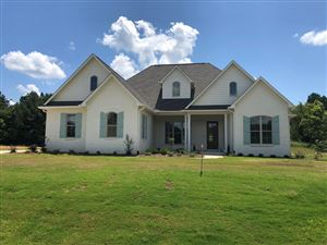 Photo of 117 Downing, OXFORD, MS 38655 (MLS # 141571)