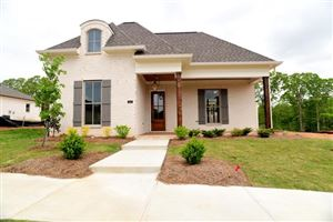 Photo of 157 Mulberry Lane, OXFORD, MS 38655 (MLS # 140717)