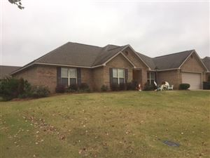 Photo of 821 Butler Drive, OXFORD, MS 38655 (MLS # 141822)
