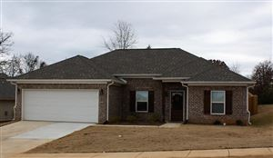 Photo of 1022 Briarwood Drive, OXFORD, MS 38655 (MLS # 141917)