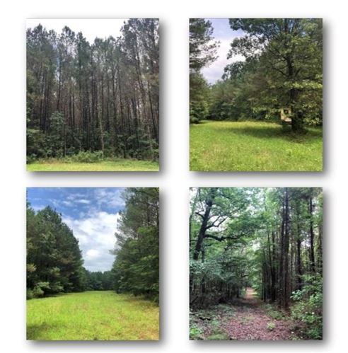 Photo of 000 CR 367, OXFORD, MS 38655 (MLS # 147940)