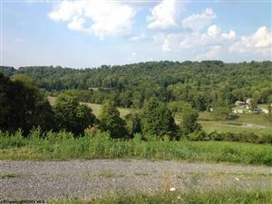 Tiny photo for TBD Guston Run Run, Morgantown, WV 26505 (MLS # 10124164)