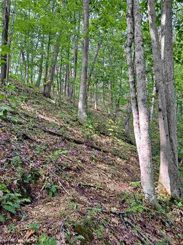 Tiny photo for 219 S Seneca Trail, Valley Bend, WV 26293 (MLS # 10134172)