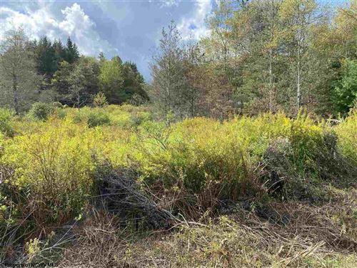 Photo of lot 47 Mountain View Circle, Davis, WV 26260 (MLS # 10140219)