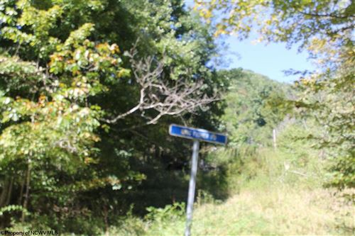 Photo of 0 Dry Fork Road Road, Davis, WV 26260 (MLS # 10140247)