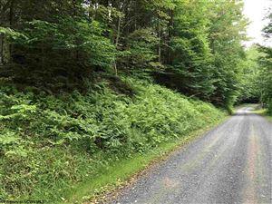Photo of 25 Black Bear Trail, Davis, WV 26260 (MLS # 10122260)