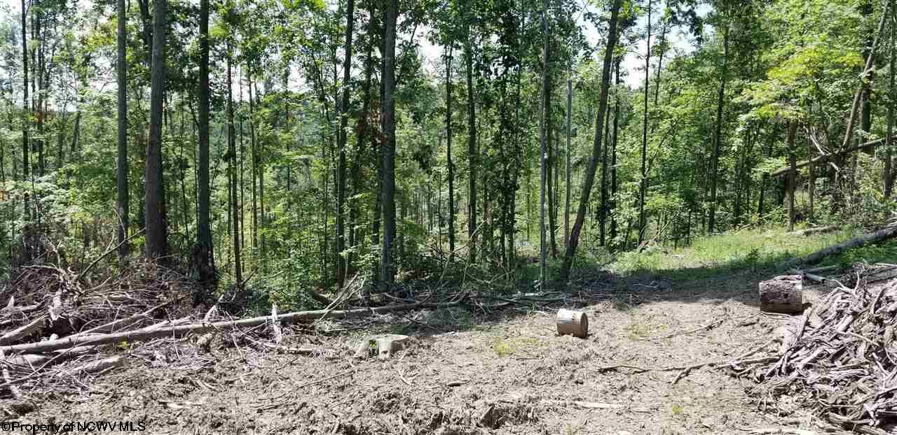 Photo for 4acre Halleck Road, Morgantown, WV 26508 (MLS # 10133422)