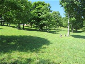 Tiny photo for Lot 88 Doe Lane, Buckhannon, WV 26201 (MLS # 10127454)