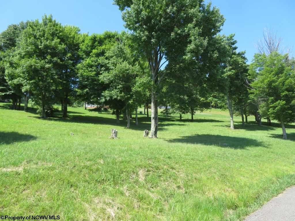 Photo for Lot 88 Doe Lane, Buckhannon, WV 26201 (MLS # 10127454)