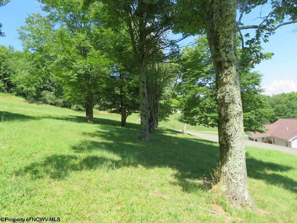 Photo for Lot 86 Doe Lane, Buckhannon, WV 26201 (MLS # 10127455)