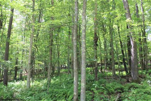 Photo of Lot 214 Trout Lily Circle, Terra Alta, WV 26764 (MLS # 10139653)