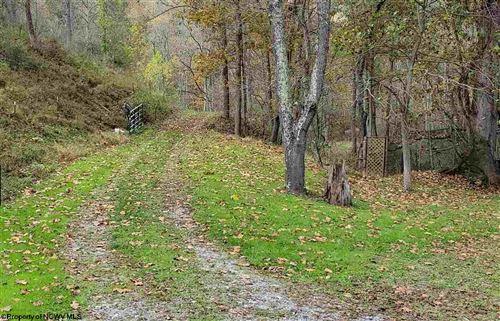 Photo of TBD Campbells Run Road, Metz, WV 26585 (MLS # 10140667)