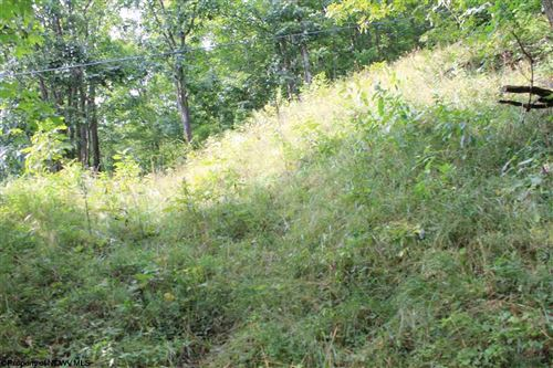Photo of Lot 7 N High Mountain Road, Harman, WV 26270 (MLS # 10099944)