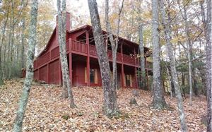 Photo of 176 MOUNTAIN LAUREL, Ellijay, GA 30536 (MLS # 293531)
