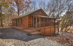 Photo of 595 MEADOW CREEK WAY, Blue Ridge, GA 30513 (MLS # 293537)