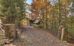 Photo of 470 THE FOREST HAS EYES, Blue Ridge, GA 30513 (MLS # 293538)