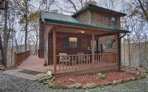 Photo of 1511 MILLENIUM DRIVE, Young Harris, GA 30582 (MLS # 293544)