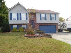 Photo of 5 S Brushwood Court, Alexandria, KY 41001 (MLS # 531487)