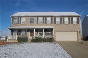 Photo of 1038 Buddleia Court, Florence, KY 41042 (MLS # 532927)
