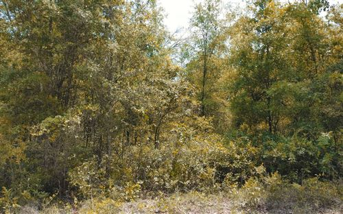 Photo of TBD 220TH PATH, OBrien, FL 32071 (MLS # 111000)