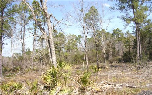 Photo of TBD ALBERT HENDRY ROAD, Other, FL 32331 (MLS # 111002)