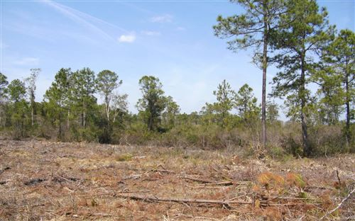 Photo of TBD2 ALBERT HENDRY ROAD, Other, FL 32331 (MLS # 111003)
