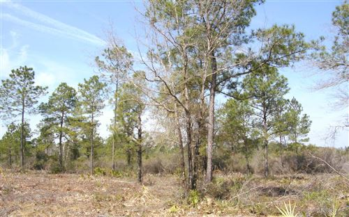 Photo of TBD3 ALBERT HENDRY ROAD, Other, FL 32331 (MLS # 111004)