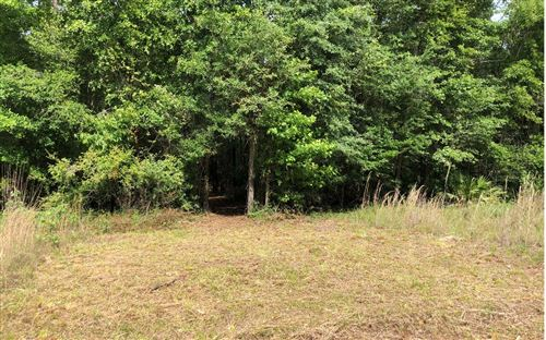 Photo of TBD 229TH DRIVE, Live Oak, FL 32060 (MLS # 111028)
