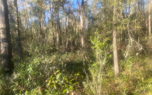 Photo of SW TAMPA GLN, Fort White, FL 32038 (MLS # 110035)