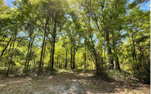 Photo of LOT 7 213TH ROAD, Live Oak, FL 32060 (MLS # 111049)