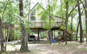 Photo of 148 NW STEPHENS LANE, Mayo, FL 32066 (MLS # 104055)