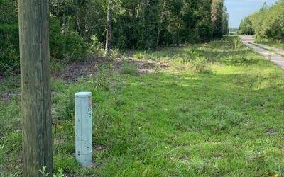Photo of TBD SE BURNSIDE RD, Lee, FL 32059 (MLS # 112058)