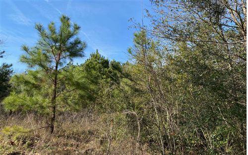 Photo of TBD 102ND TERRACE 25 &26, Live Oak, FL 32060 (MLS # 110066)