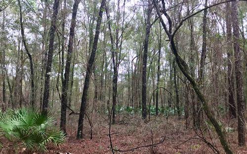 Photo of LOT20 N CR 349, OBrien, FL 32071 (MLS # 110105)