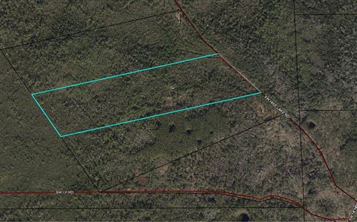 Photo of TBD SW HIKE LAKE ROAD, Madison, FL 32340 (MLS # 108106)